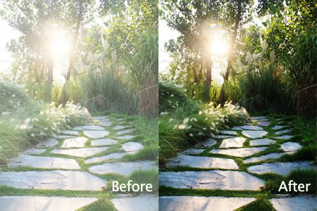 Rescue Poorly Exposed Photos 2 – Fix overexposed Photos