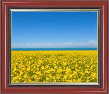 Add a Frame to Photo - User Guide of PT Watermark - Batch ...